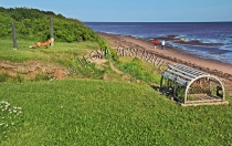 CANADA;PRINCE_EDWARD_ISLAND;PRINCE_COUNTY;CAP_EGMONT;LOBSTER_TRAPS;TRAPS;FOXES;B